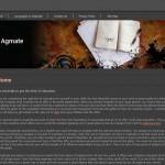 AG Mate Academy
