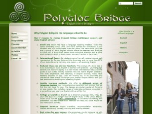 Polygot Bridge